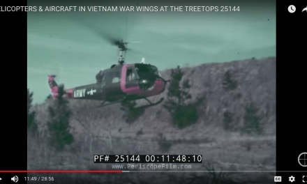 Wings at the Treetops: Choppers and Aircraft in Vietnam